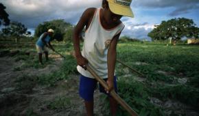 Chile/ Indígenas, claves en adaptación al cambio climático