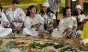 Gobierno no ha cumplido los compromisos del Plan de Desarrollo con los pueblos indígenas