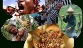 Victoria del movimiento campesino en la lucha por el reconocimiento de sus derechos dentro de la ONU