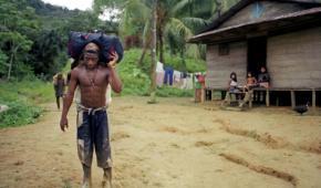 Emergencia humanitaria en Ato Baudó,  Chocó