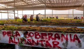 Soberanía alimentaria y cambio climático