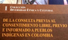 """""""De la Consulta Previa al Consentimiento, Previo, Libre e Informado"""", nueva obra de Gloria Amparo Rodríguez, una mirada más profunda de este derecho y sus implicaciones en el modelo de desarrollo"""