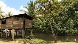 Agresión a la Oficina de ASO MANOS NEGRAS y a la Residencia de Yolanda García en Guapi